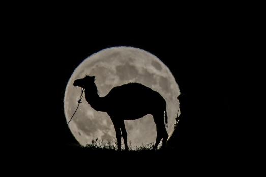 7 ağustos'ta dünyanın pek çok bölgesinde kısmi Ay tutulması yaşandı.