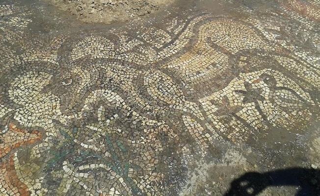 Adıyaman'da bulunan 1600 yıllık mozaik koruma altında