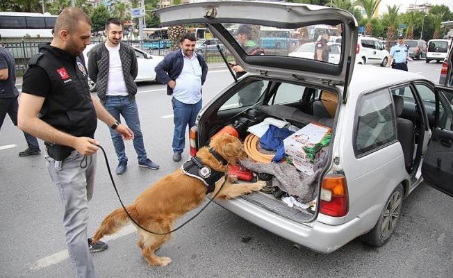 İstanbul'da 'Kurt Kapanı-6' operasyonu tamamlandı
