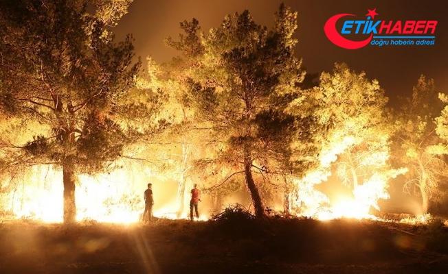 Bir haftada 645 hektar ormanlık alan yandı