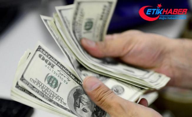 Özel sektörün borcu 224.4 milyar dolar