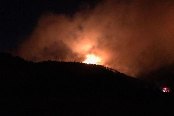 Kütahya'da, Domaniç'in ardından Emet'te de orman yangını çıktı