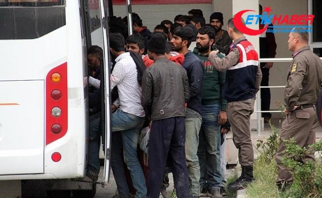 Edirne'de 264 kaçak ve sığınmacı yakalandı