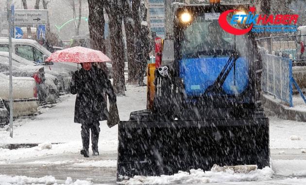 Erzurum'a mart karı