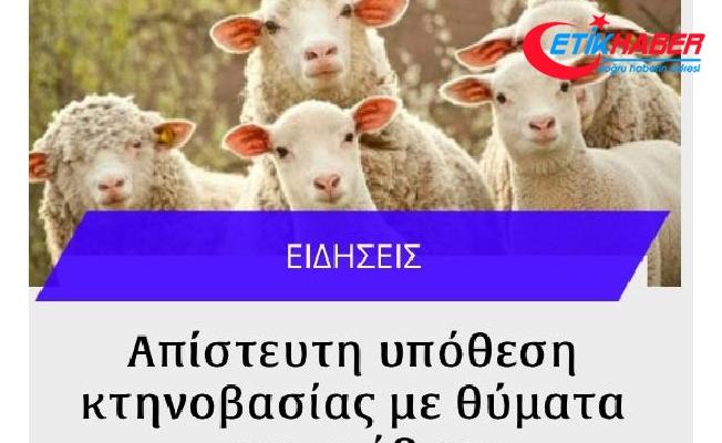 Güney Kıbrıs'ta koyun ve keçilere tecavüzden tutuklandı