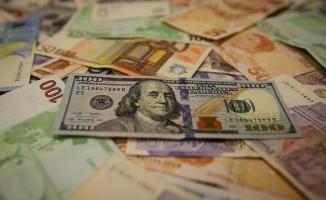 Dolar Yılın En Yüksek Seviyesinde, Euro Rekor Tazeledi