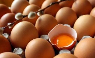 Bakanlık 'zehirli yumurta' tartışmasına noktayı koydu