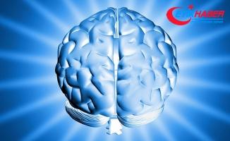 Zeki insanlar daha etkin beyin bağlantılarına sahip