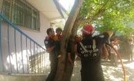 Ağaçtan düşerken dallara sıkışan çocuğu itfaiye kurtardı