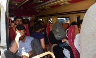 Çanakkale'de 226 yabancı uyruklu yakalandı