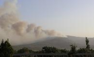 Denizli'de orman yangını nedeniyle 2 mahalle boşaltıldı