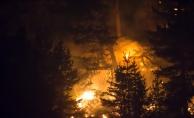 Kütahya ve Bilecik'teki orman yangınları devam ediyor