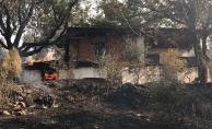 Muğla'daki orman yangınında 9 ev kül oldu