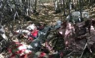 Kars'ta terör operasyonu: PKK'ya ait 4 sığınak tespit edildi
