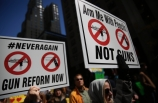ABD'de silah karşıtı öğrenci protestoları