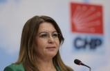 """CHP Genel Başkan Yardımcısı Karaca, """"5 Haziran Dünya Çevre Günü""""nde basın toplantısında konuştu:"""