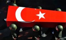 Bitlis'te terör operasyonu: 2 askerimiz şehit