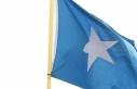 Somali, Körfez krizindeki tarafsızlığının bedelini...