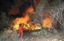 Antalya'daki orman yangını kontrol altına...