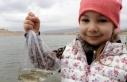 Sarımsaklı Barajı'na 120 bin sazan yavrusu...