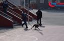 Okula giren pitbull öğrencilere saldırdı