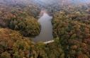 Orman zararlılarıyla mücadele için 8 milyon lira...
