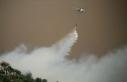 Şiddetli rüzgar orman yangınlarıyla mücadeleyi...