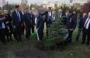Şentop'tan '11 Milyon Ağaç; Bugün Fidan,...