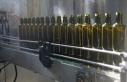 Zeytin ve zeytinyağı ihracatında hedef Brezilya...