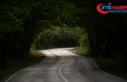 Safranbolu'nun ağaç tünelli yolu 'yolcularını'...