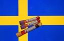 İsveç'te Kovid-19'dan ölenlerin sayısı...