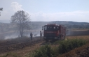 Samsun'da çıkan yangında bin dekar ekili arazi...