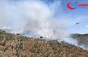 Muğla'da çıkan orman yangınına müdahale...