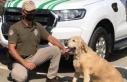 'Çevre, Doğa ve Hayvanları Koruma' polisleri...
