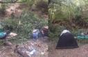 Kampçıların üzerine ağaç devrildi: 1'i...