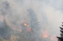 3 gündür devam eden orman yangını yayla evlerine...