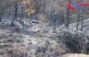 Hatay'daki orman yangınında soğutma çalışmaları...