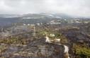 Hatay'daki orman yangınında zarar gören alanlar...