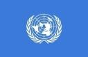 """BM 5 özel raportörü: """"Fransa'nın güvenlik..."""