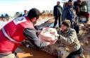 Türk Kızılay İdlib'deki selzedelere yardım...