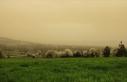 Meteorolojiden 7 il için toz taşınımı uyarısı