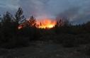 Muğla'da çıkan orman yangınlarına müdahale...