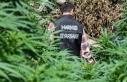 Diyarbakır merkezli 5 ilde 'narkoterör finans'...