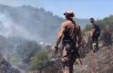 Kocaeli'de çıkan orman yangınında 20 dönüm...