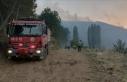 Aydın'ın Karacasu ilçesindeki orman yangınına...