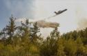 Sağlık Bakanı Koca yangın bölgelerindeki son...