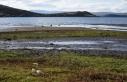 Yağışlar azalınca Çıldır Gölü'nde su...
