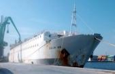 İzmir'e indirilmeyen angusları taşıyan gemi, İskenderun'da