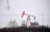 Brent petrolün varil fiyatı 30 doların üstüne çıktı
