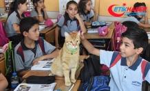 Yaz tatilinde özlenen 'Tombi', sınıfa geri döndü